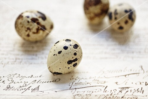 Quail's eggs on an old letter