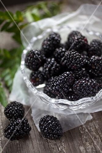 Fresh blackberries in and beside a glass bowl