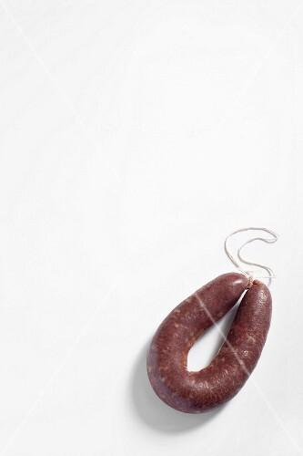 Butifarra (fresh pork and blood sausage, Catalonia)