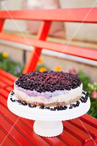 A cheesecake with fresh blueberries on a torte stand