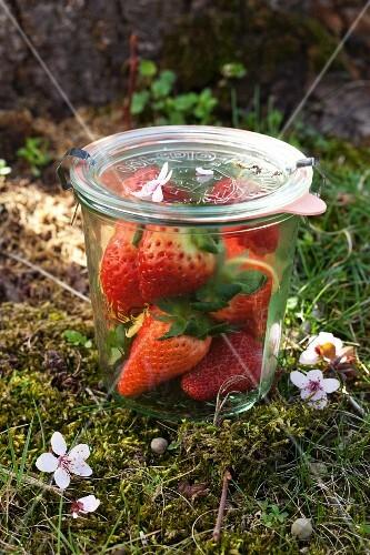Fresh strawberries in a preserving jar