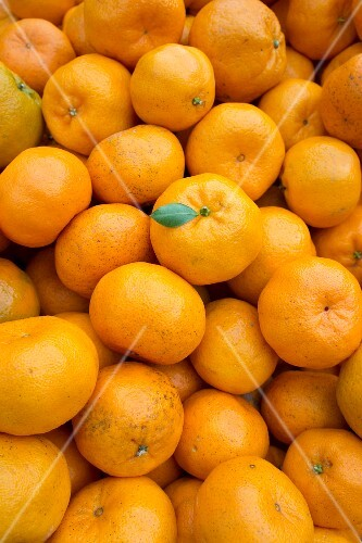Lots of mandarins (filling the image)