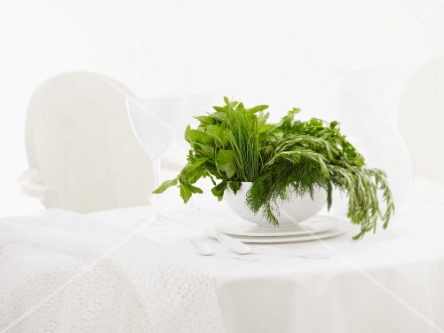Assorted herbs in a soup bowl