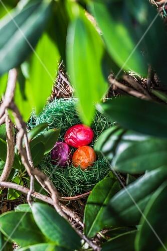 Coloured eggs, for Easter, in a hidden nest in the garden