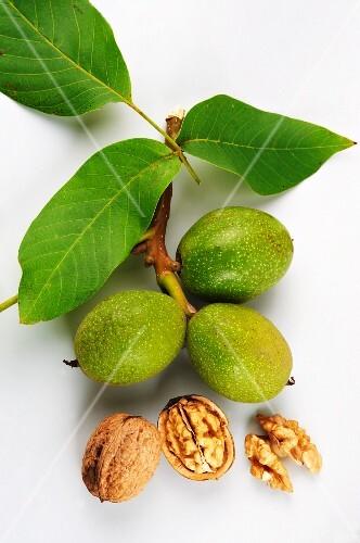 Green and dried walnuts