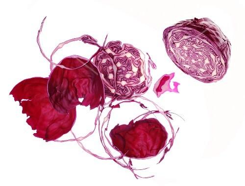 Red cabbage (still life)