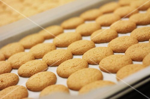 Freshly baked amaretti biscuits on the baking tray