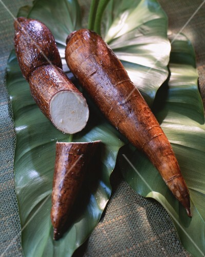 Cassava roots on top of leaves