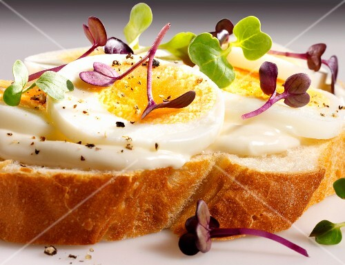 A slice of white bread topped with mayonnaise, egg and cress