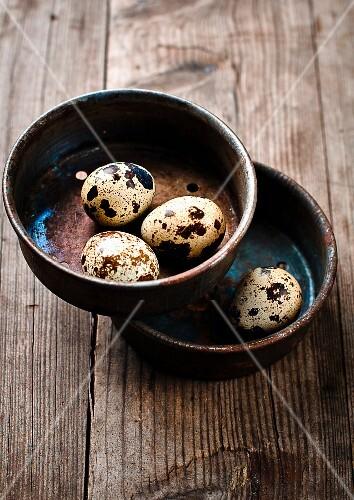 Quail's eggs in ceramic pots