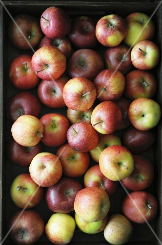 Lots of apples in a crate