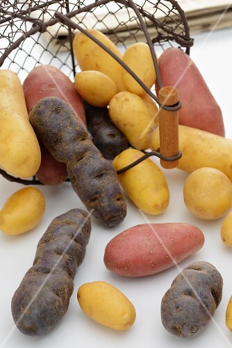 Assorted potatoes with a wire basket