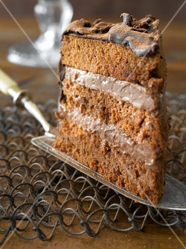 A slice of chocolate torte on a cake slice