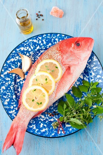 Whole Red Snapper with Fresh Herbs and Lemon Slices on a Blue and White Plate