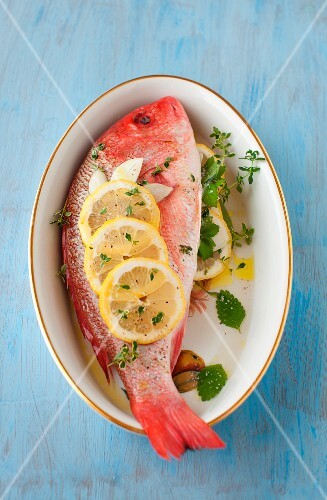 Whole Red Snapper with Fresh Herbs and Lemon; In a Bowl; From Above