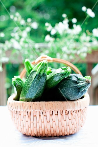 Fresh Whole Zucchini in a Basket