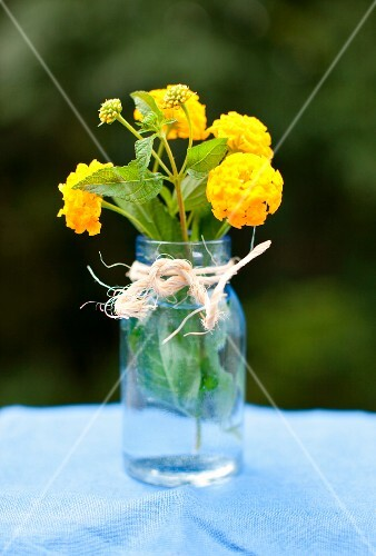 Small Jar of Yellow Lantana Flowers Toe with Twine on an Outdoor Table