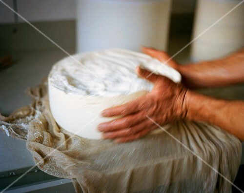 Hands Working with Urner Alpkäse (Swiss) Cheese