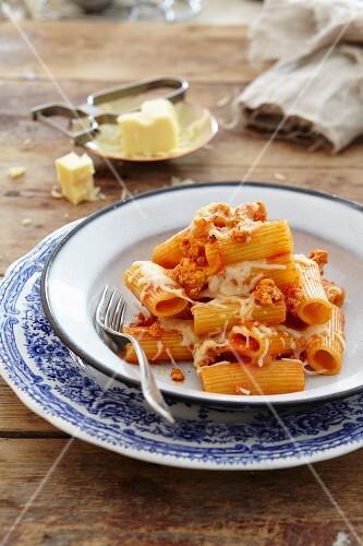 Ziti pasta with chicken and cheese