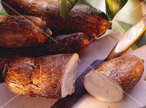 Several yucca roots (manioc, cassava)