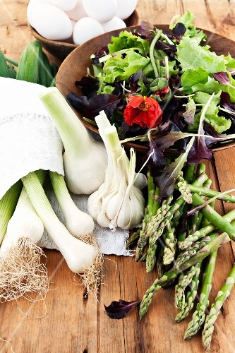 Asparagus, lettuce leaves, spring onions and garlic