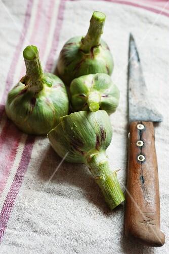 Artichoke stalks and a knife