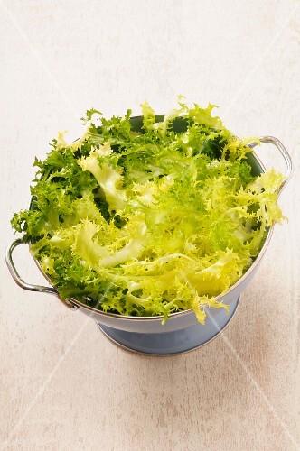 Frisée lettuce in a colander