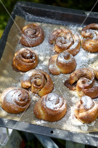 Kanelbullar (Swedish cinnamon whirls) with icing sugar