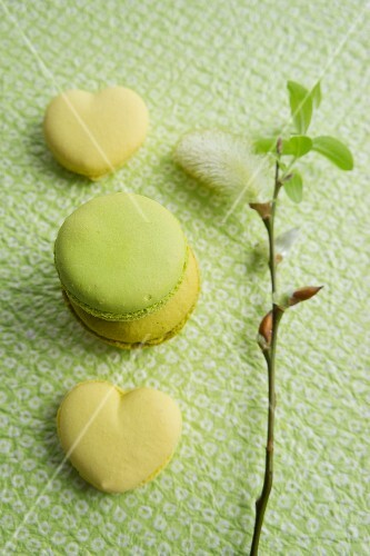 Lime macaroons, heart-shaped lemon macaroons and a willow catkin