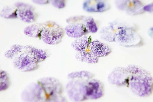 Candied violets