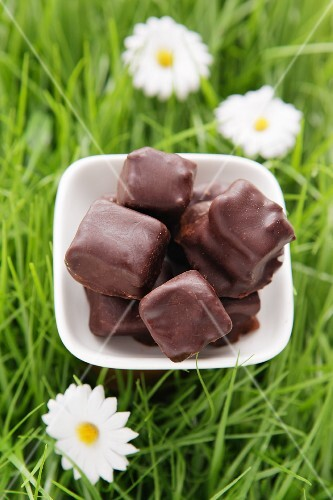 Filled chocolates on artificial grass