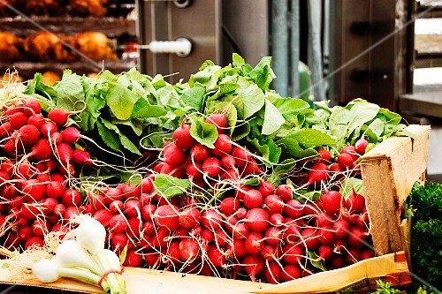 Radishes in a crate at the market