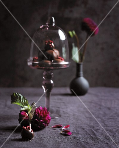 Chocolate truffles under a glass cloche