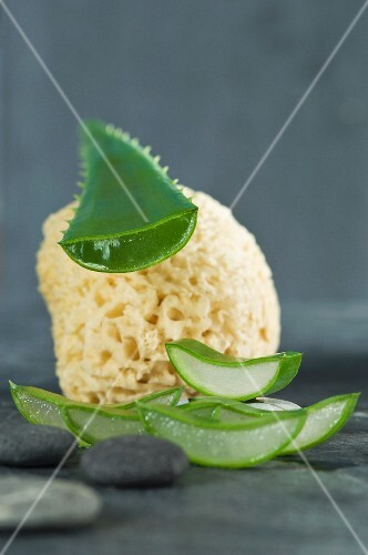 A sliced aloe vera leaf with a sponge luffa and pebbles
