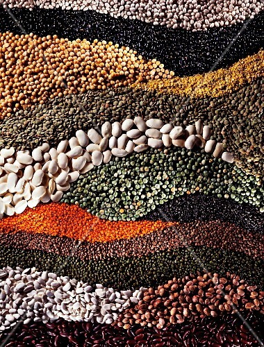Assorted pulses arranged in waves