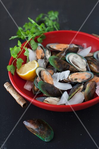 Green mussels with lemon and ice in a red bowl