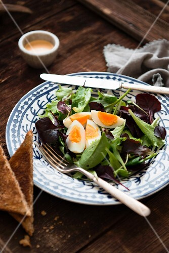 Lettuce leaves with boiled egg and toast
