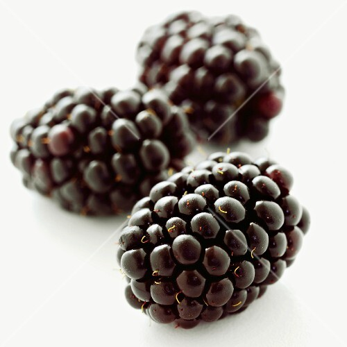 Three Whole Blackberries on a White Background