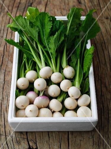 Box of Baby Turnips