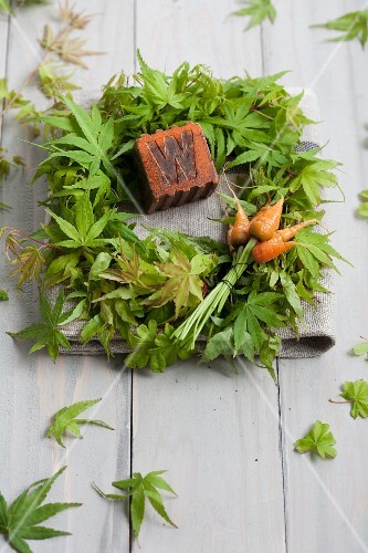 A wreath of maple leaves with a wooden cube