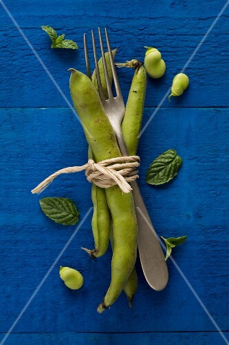 Broad beans, a fork and mint