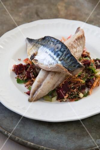 Mackerel and quinoa salad