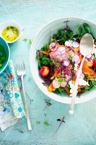 Summer Salad in a Serving Bowl with Radishes and Cherries