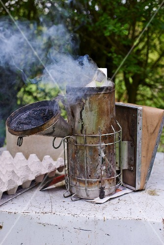 A smoker for smoking bees