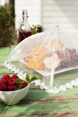 A plate of fruit on a garden table, protected from flies with a food cover