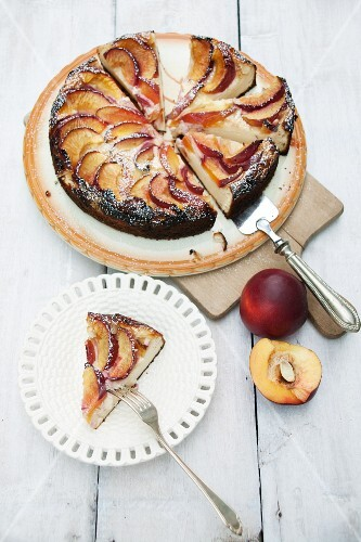 Sour cream cake with nectarines