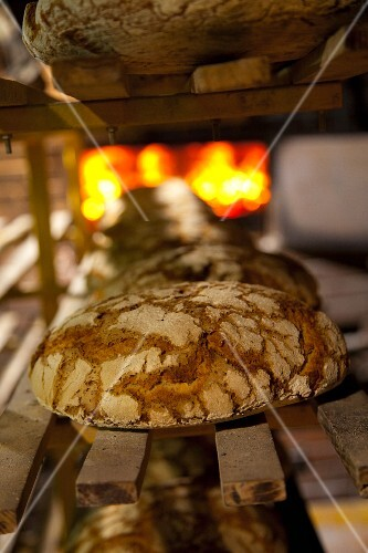 Freshly baked loaves on a shelf in front of the wood-fired oven at the bakery