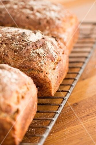 Freshly baked sourdough bread on a cooling rack