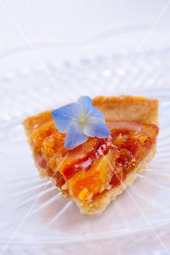 A slice of orange tart with a blue hydrangea flower