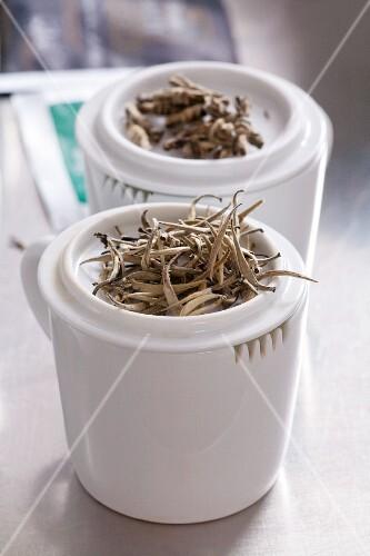 Jasmine tea leaves in tea cups